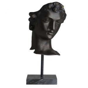 Head David